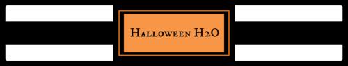 "OL435 - 8.1875"" x 1.375"" - Halloween H20 Bottle"