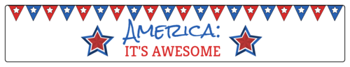 "OL435 - 8.1875"" x 1.375"" - America It's Awesome - Funny Water Bottle Labels"