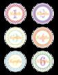 Baby Age Milestone Sticker Label Months 1-6