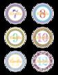 Baby Age Milestone Sticker Label Months 7-12