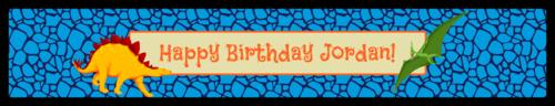 "OL435 - 8.1875"" x 1.375"" - Dinosaur Birthday Water Bottle Labels"