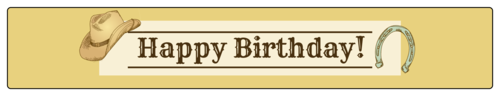 "OL435 - 8.1875"" x 1.375"" - Cowboy Birthday Water Bottle Label"