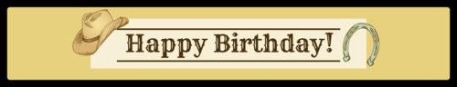 "OL435 - 8.1875"" x 1.375"" - Cowboy Birthday Water Bottle Label"