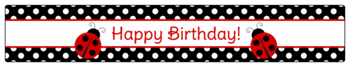 "OL435 - 8.1875"" x 1.375"" - Ladybug Birthday Water Bottle Labels"