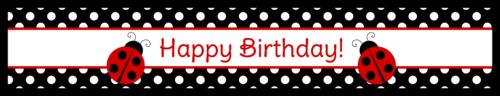 "OL435 - 8.1875"" x 1.375"" - Ladybug Birthday Water Bottle Labels"