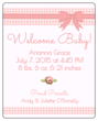 Birth Announcement Wine Bottle Labels