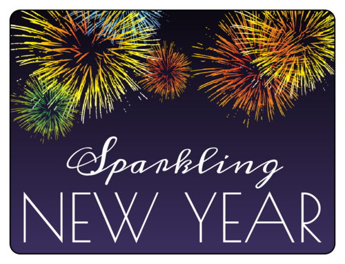 "OL500 - 4"" x 3"" - ""Sparkling New Year"" Champagne Bottle Labels"