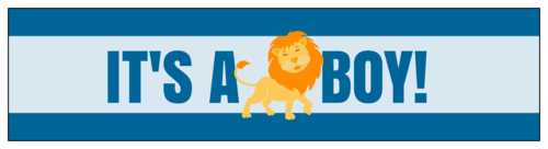 "OL1159 - 8"" x 2"" - ""It's a Boy!"" Lion Themed Water Bottle Labels"