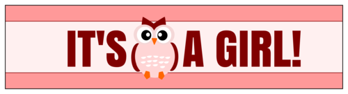 """It's a Girl!"" Owl Themed Water Bottle Labels pre-designed label template for OL1159"
