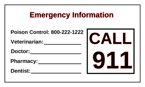 "OL402 - 3.5"" x 2"" - Emergency Information Magnets"