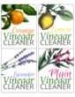 Homemade Vinegar Cleaners