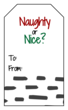 """Naughty or Nice?"" Gift Tag Labels"