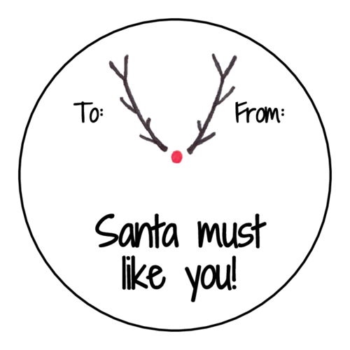 "OL317 - 7"" Circle - ""Santa must like you!"" Gift Tag Labels"