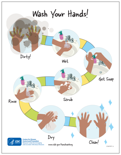 "OL175 - 8.5"" x 11"" - CDC ""Wash Your Hands!"" Hand Washing Awareness Poster"