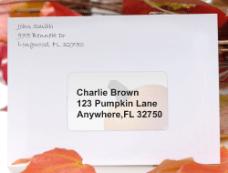 Thanksgiving Holiday Mail