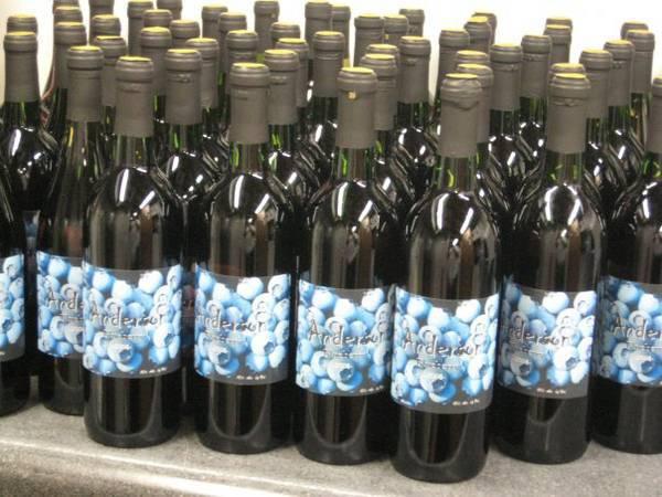 homemade wine labels - customer ideas