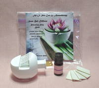 Scent Ball Diffuser with Relaxation Essential Oil Blend