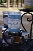 Dragonhold Candle Jar labels