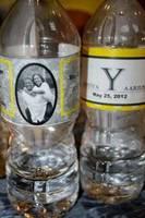 Water Bottle Labels - LaToya & Aarius' Wedding Day - Drink up!