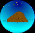 Sleeping bear under the stars