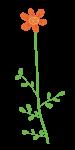 Wild Flower Clipart