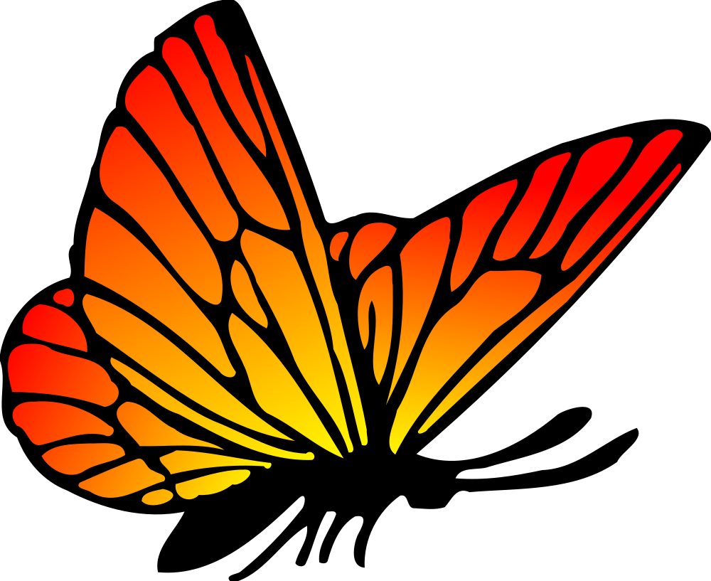 OnlineLabels Clip Art - Butterfly 16 (Colour)