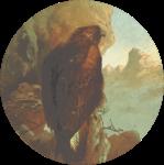 Circular eagle drawing