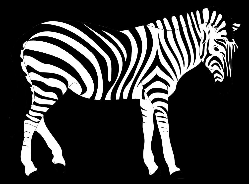 OnlineLabels Clip Art - Realistic Zebra Illustration