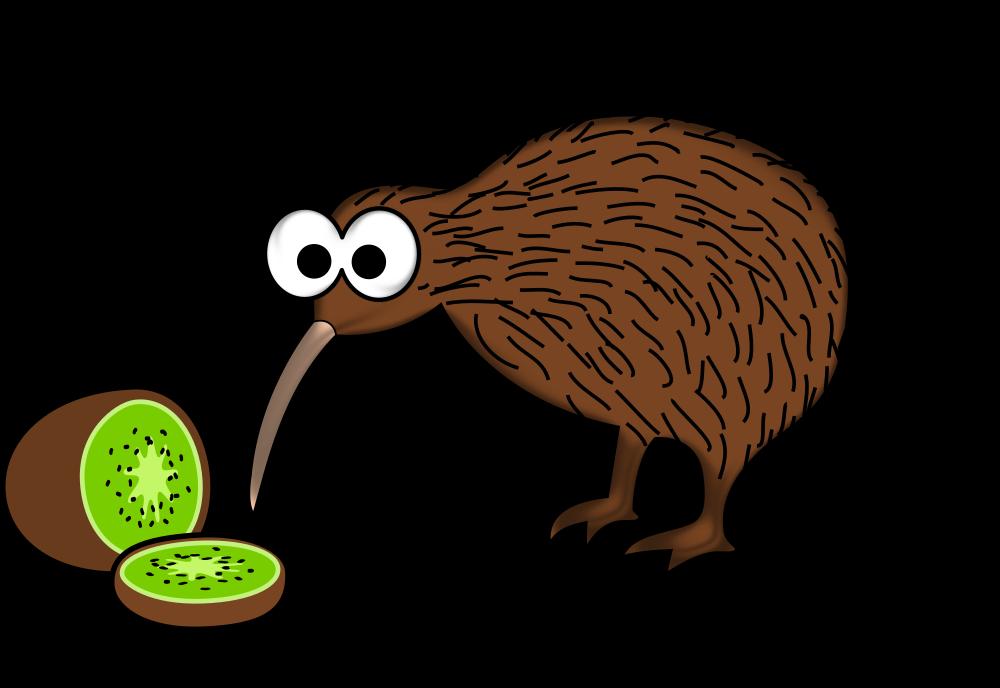 OnlineLabels Clip Art - Cartoon Kiwi Bird With Kiwi Fruit (1000 x 688 Pixel)