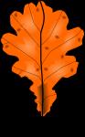 Fall2010-1