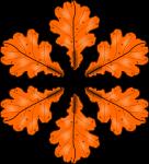 Fall2010-2
