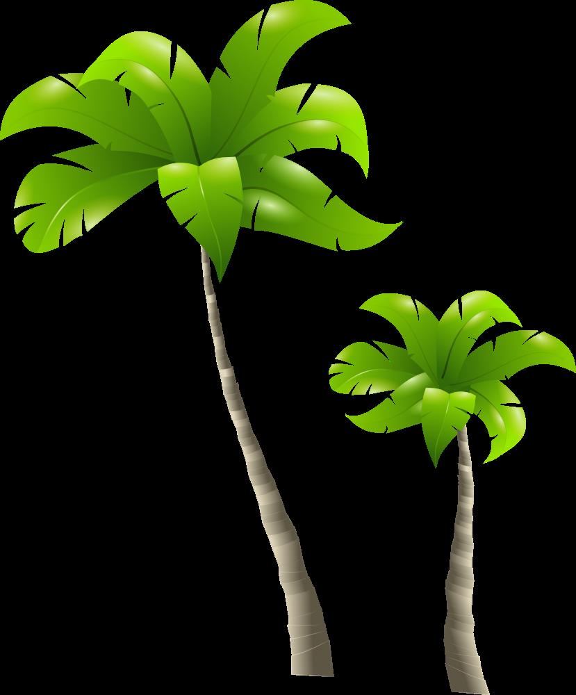 Onlinelabels clip art palm trees palmiers - Palmier clipart ...