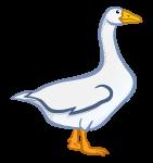 goose - coloured