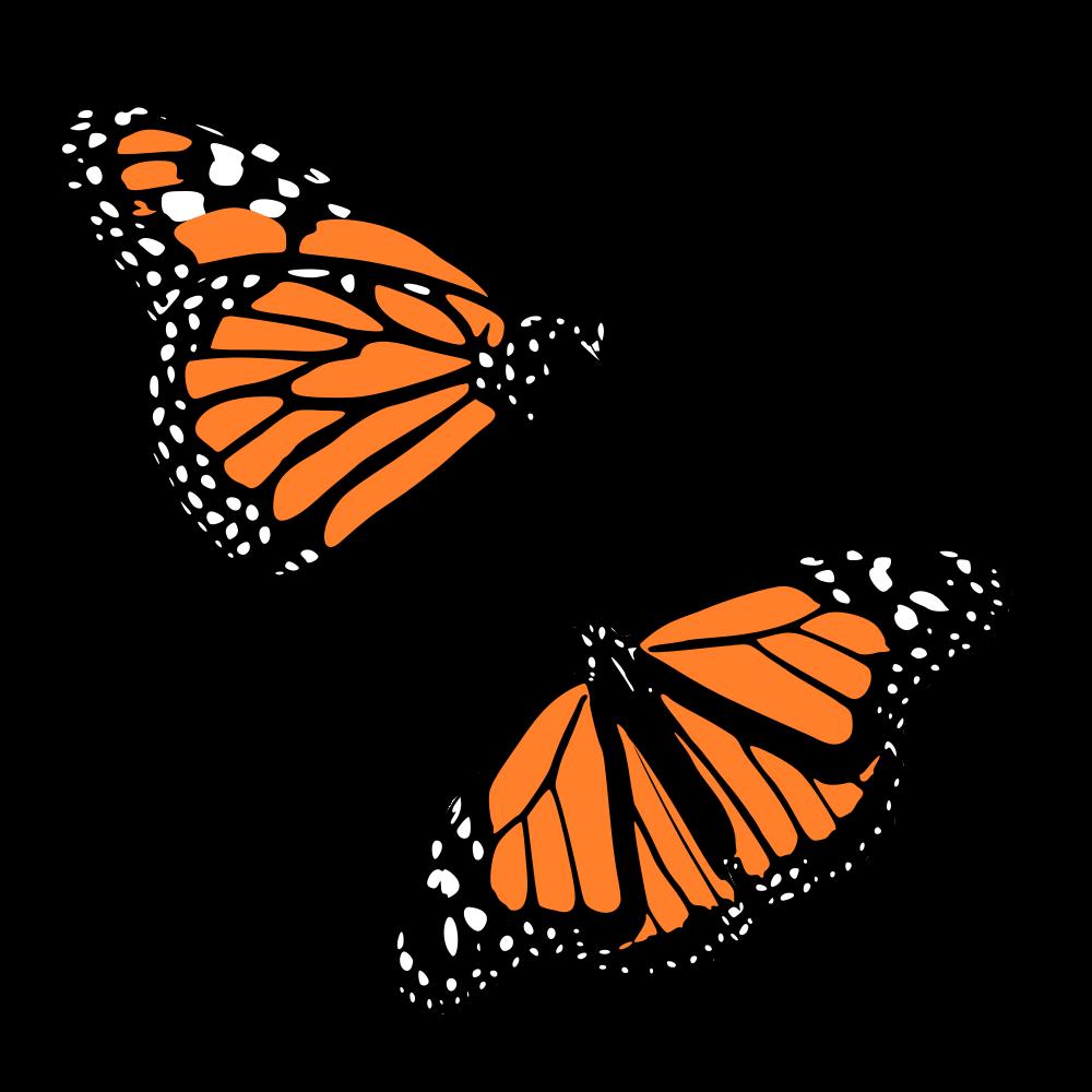 onlinelabels clip art monarch butterflies rh onlinelabels com monarch butterfly clipart images Black and White Monarch Butterfly Clip Art