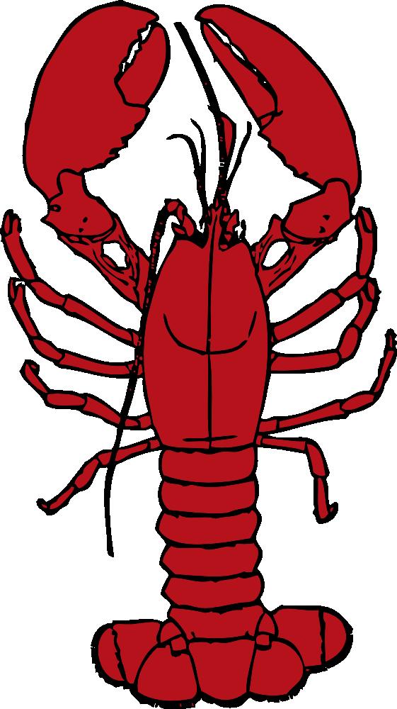 onlinelabels clip art lobster rh onlinelabels com lobster clipart lobster clipart png