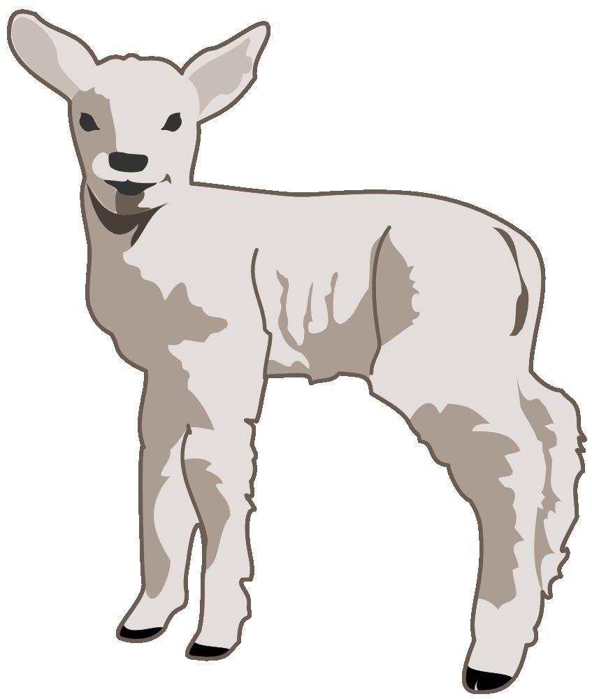 OnlineLabels Clip Art - Young Lamb