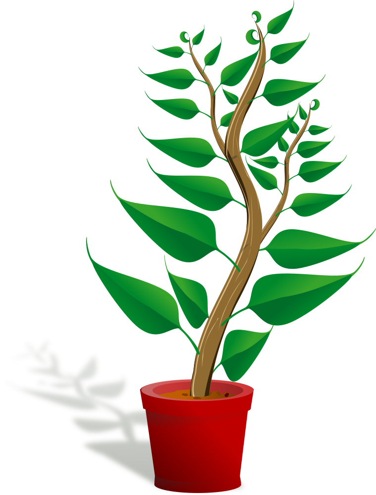 OnlineLabels Clip Art - Green Tall Plant In Its Pot