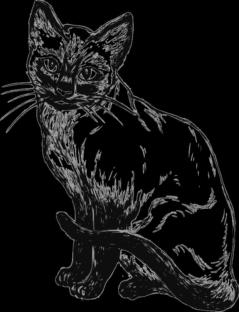 OnlineLabels Clip Art - Siamese Cat (766 x 1000 Pixel)