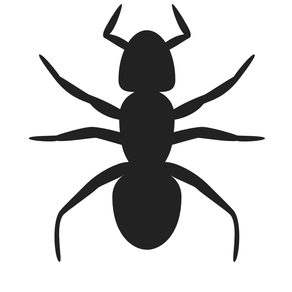 free png Ants Clipart images transparent