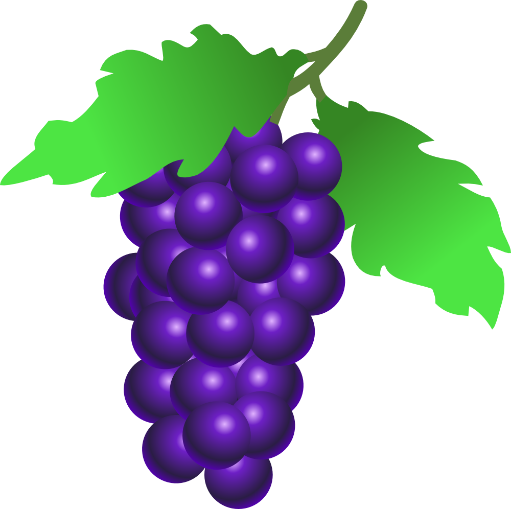 onlinelabels clip art grapes rh onlinelabels com clip art grapes and vines clipart grapes black and white