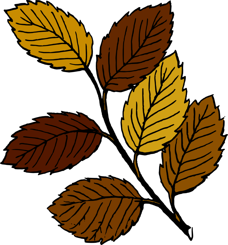 OnlineLabels Clip Art - Autumn Leaves On Branch