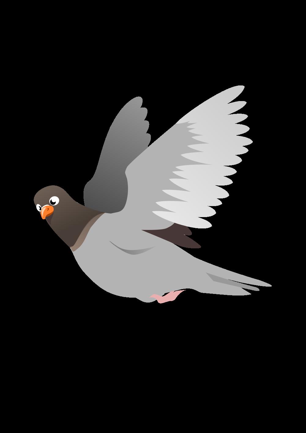 Картинки птица в полете для детей, картинки спокойной