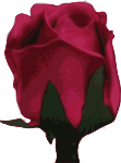 flower-09