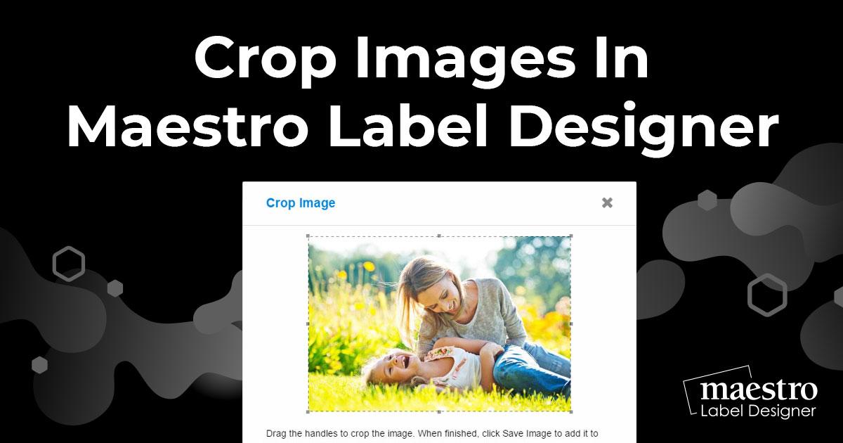 Cropping images in Maestro Label Designer