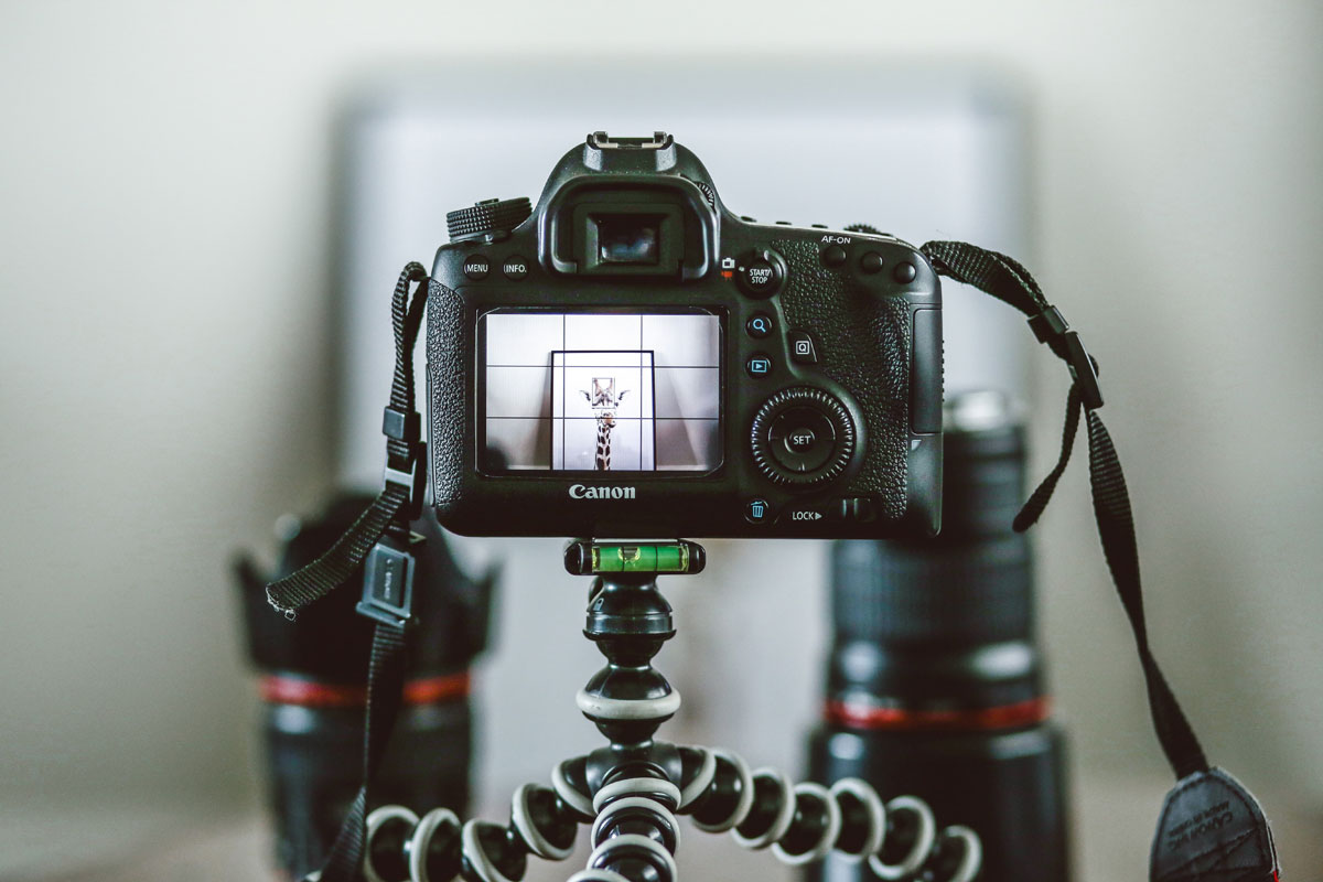 Set up your equipment and shoot.